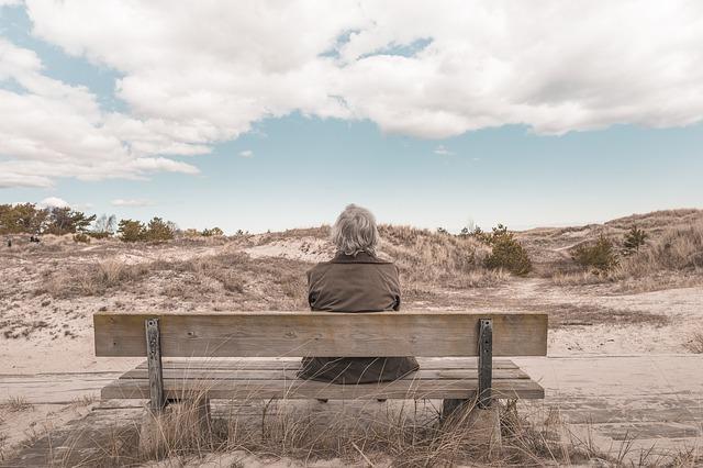 Protégé: Documents de la formation Pathologies psychiatriques du sujet âgé